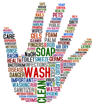 Hand Hygiene Challenges for Correctional Nurses ...