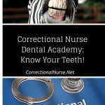 Correctional Nurse Dental Academy: Know Your Teeth!